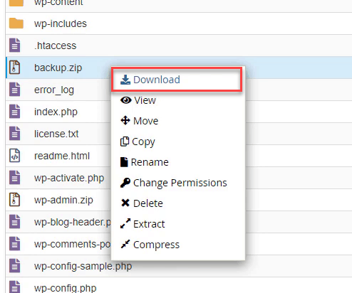 download zip file to your computer